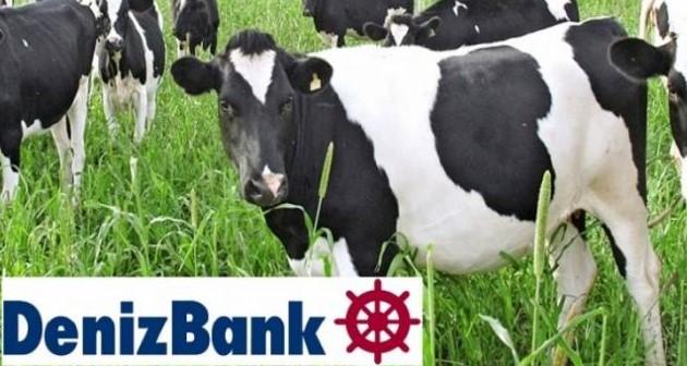 Denizbank Hayvancılık Kredisi Faiz Oranları