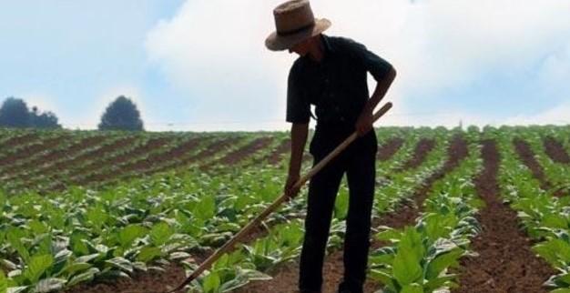 Genç Çiftçi Başvurusu Ne Zaman