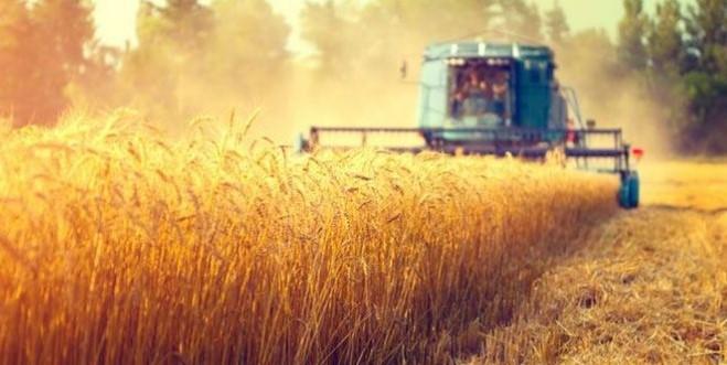 Tarım Kredi Kooperatifleri Faizsiz Kredi