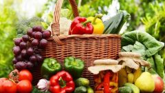 Organik Tarım 2019-2020 Desteklemesi