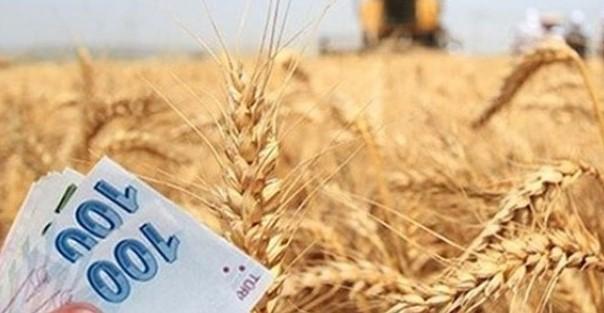 Tarım Havzaları Üretim ve Desteleme Modeline Göre Fark Ödemesi Desteği