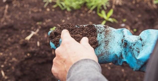 Toprak Analiz Desteğinden Kimler Yararlanabilir?